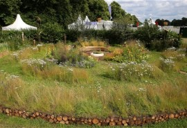 Hampton Court Flower Show 2014 – Jordans Cereals Wildlife Garden
